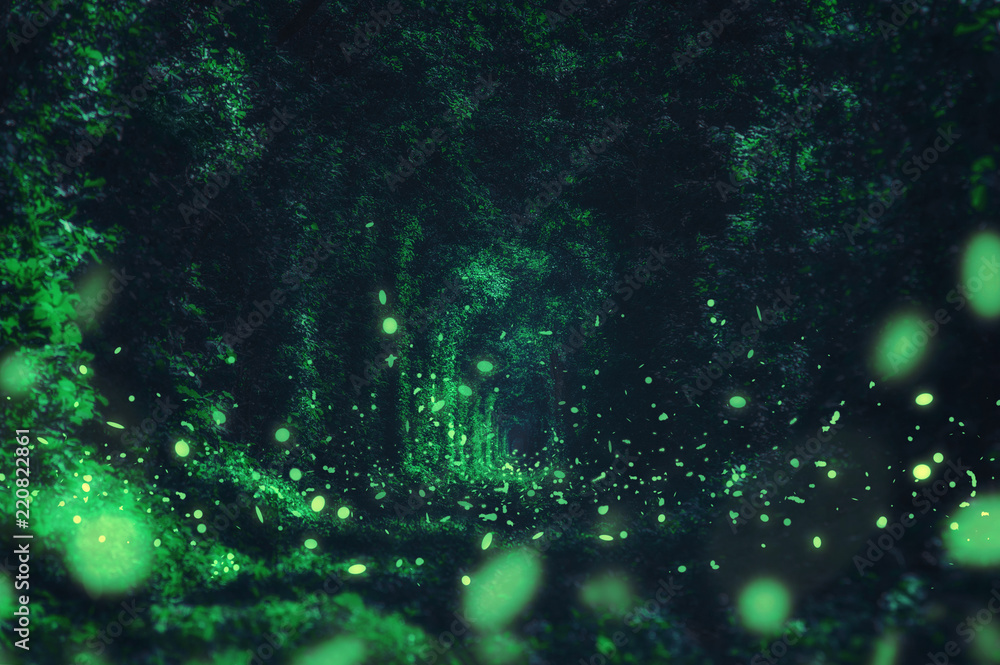 Fototapeta Fireflies in the wild forest. famous romantic place called Tunnel of Love, Klevan, Ukraine.  natural summer (spring) background (collage)
