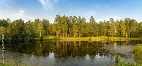 осенняя панорама с прудом и соснами на берегу, Россия Урал, сентябрь Canvas Print