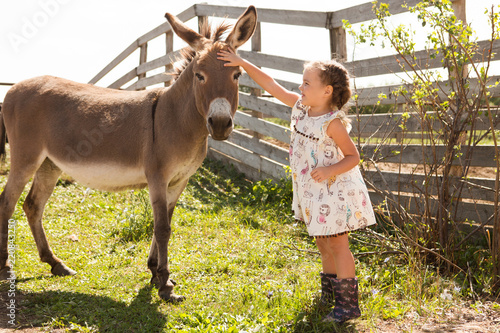 Fotografija little girl with a donkey is resting  on a farm in the summer