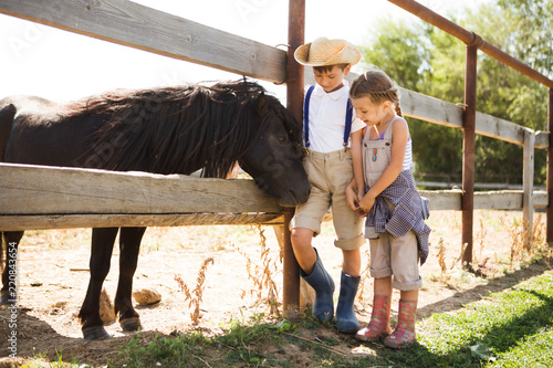Fotografie, Obraz Two little children the brother and a sister with a pony is resting  on a farm i