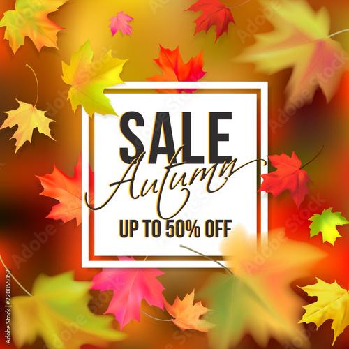 Obraz Autumn typographic sale - fototapety do salonu