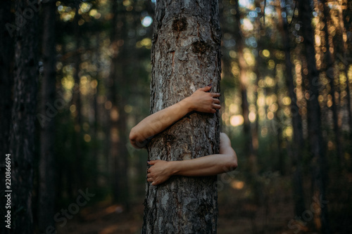 Photo  Closeup Hands of Woman Hugging Tree