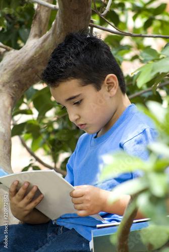 Fotografie, Obraz  A boy reading