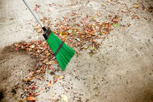 Man Sweeps Broom Leaves In The...