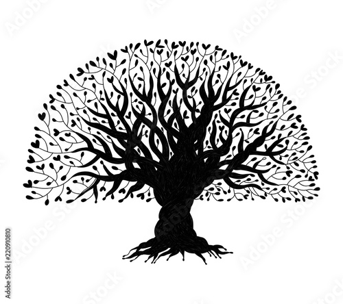Photo  Big tree with roots for your design