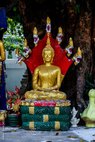 Fotografia  Beautiful photo picture taken in thailand