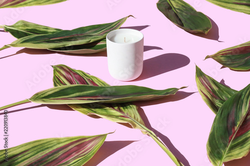 Tuinposter Planten Candle Series
