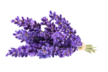 Bouguet of violet lavendula flowers isolated on white background, close up