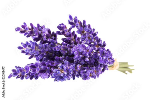Fotobehang Lavendel Bouguet of violet lavendula flowers isolated on white background, close up