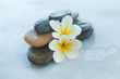 spa objects for massage on white background.