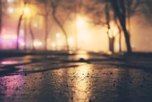 Alley Of The Evening Misty Par...