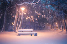 Night Winter Landscape. Snowy Alley Of City Illuminated Park