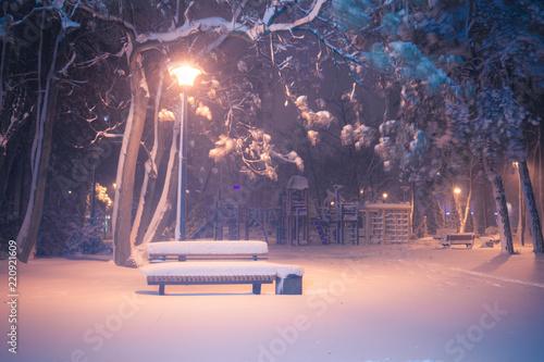 Montage in der Fensternische Lachs Night winter landscape. Snowy alley of city illuminated park