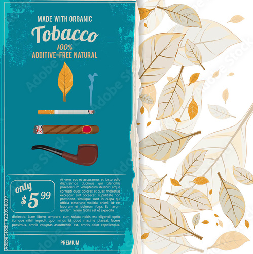 Fotografía Background illustrations with tobacco leafs, cigarettes and various tools for smokers