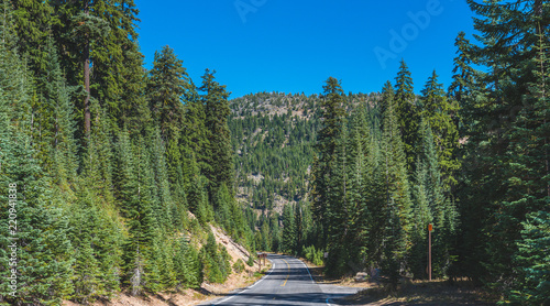 scenic view of the road with forest and  with mountain background. #220941838