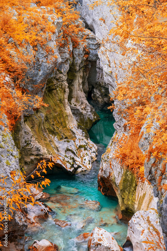 Tuinposter Alpen Scenic view of Great Canyon of Soca river near Bovec, Slovenia at autumn day
