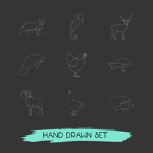 Set Of Zoo Icons Line Style Sy...