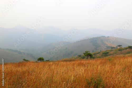 Hills and weeds in a geological park