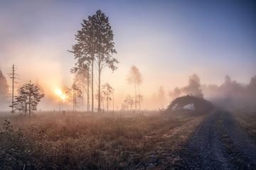Fototapeta Foggy morning sunrise by the lake