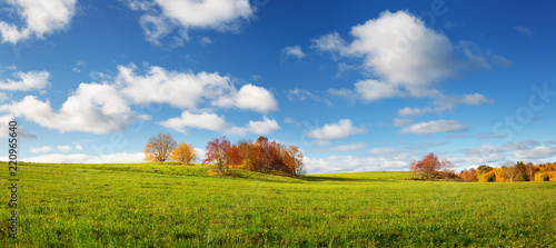 Foto op Canvas Herfst trees with multicolored leaves on the field