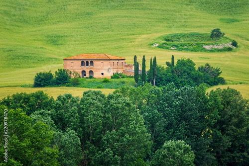 Poster Pistache Landscape near Campana, Tuscany