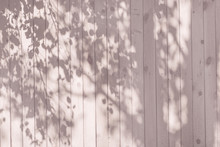 A Shadow From The Leaves On A Pink Wooden Wall