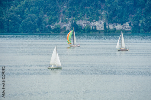 Three sailboats enjoying the wind on a lake