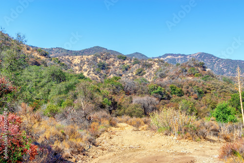 Foto op Canvas Blauw Dirt road for hiking and biking in Southern California summer sun