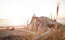 A Driftwood Shelter On A Winds...
