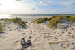 canvas print picture - View to beautiful landscape with beach and sand dunes near Henne Strand, Jutland Denmark