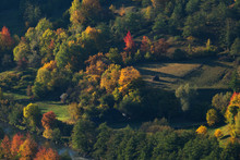 Aerial View Of Houses And Forest In Autumn Season