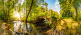 Fototapeta Las - Old bridge over a creek in the forest with bright sun shining throug the trees