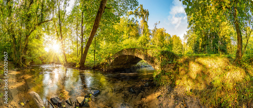 Poster Miel Old bridge over a creek in the forest with bright sun shining throug the trees