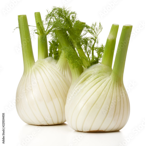 Fotografía  Fresh fennel bulb isolated on white background close up