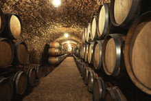 Wine Cellar Interior With Large Wooden Barrels