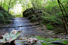 Almost Dry Jackson Falls In August At Natchez Trace Parkway