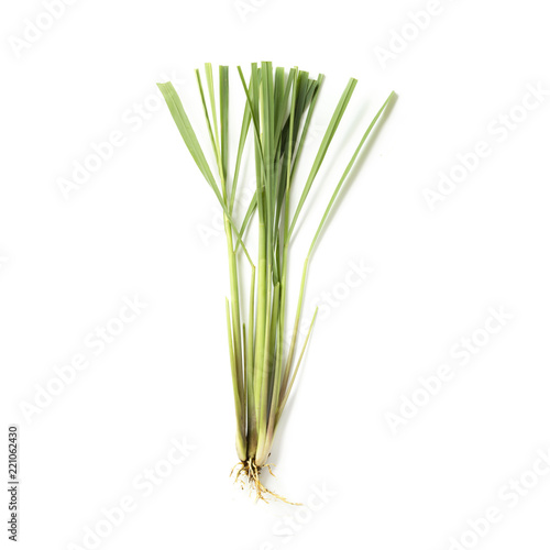Foto auf AluDibond Aromastoffe Lemongrass herb on white background