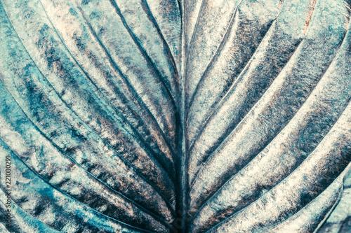 srebny-metal-malowal-zielonego-organicznie-lisc-jako-abstrakcjonistyczna-krea