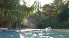 Sun Shines Through The Green Trees Surrounding The Scenic Natural Pools In Tuscany. Steam Rises Above The Thermal Water Of Natural Springs Flowing Over The Stone Ledge. Refreshing Hot Baths In Italy.