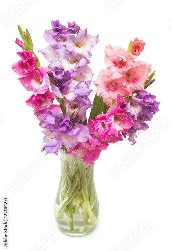 Fotografía Beautiful bouquet pink fashionable gladiolus flower in a vase isolated on white background