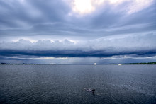 Dolphin Cavorts In Indian River Lagoon, Shelf Cloud Moves In Ahead Of Approaching Storm, Florida