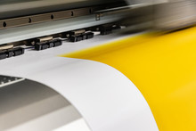 Big Professional High Quality Printer, Processing A Fine Art Yellow Paper Roll With Glossy Finish For Color Sampling, Before Definitve Calibration.