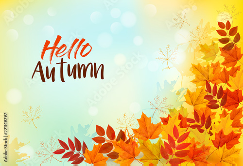 Fotografia  Autumn Background With Colorful Leaves. Vector