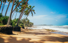 Palm Trees On The Ocean, Golden Sand And Oceanic Surf, Light Clouds In The Sky Above The Horizon Line, Silence And Tranquility Of The Tropical Island. Sri Lanka, Asia