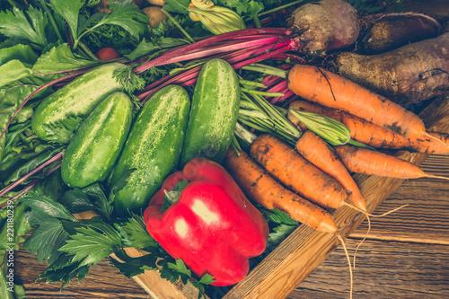 Bio organic vegetable Canvas Print
