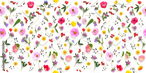 Fotobehang Bloemen Flowers flat lay. Seamless pattern from plants, wild flowers and berries, isolated on white background, top view.