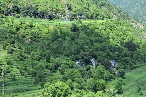 Fotobehang Olijf view of landscape