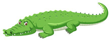 A Green Crocodile On White Bac...