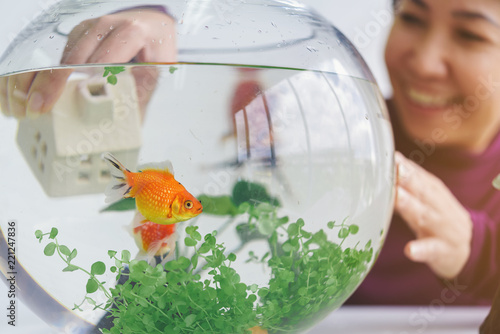 Photo A woman's hand is decorating the aquarium in a fishbowl as a hobby