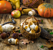 Autumn Fruit On Wood. Mushroom...